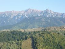 Zadziwiający las i góry w słonecznym dniu fotografia stock