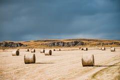 Zadziwiający Północny krajobraz, Iceland Siano sterty na polu Idylliczna dolina z góry linia horyzontu zdjęcie stock