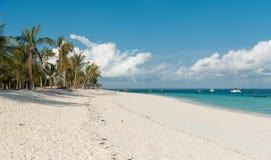 Zadziwiająca afrykanin plaża z palmami i horyzontem na tle Fotografia Stock