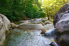 Zadziwiająca halna mała rzeka wśród południowych lasów Zdjęcia Royalty Free