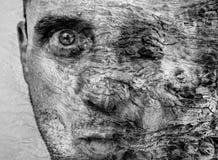 Zadziwiająca metamorfizacja mężczyzna zostać drzewo, drzewnej barkentyny tekstura na twarzy ludzkiej, graficzna sztuki, pięknej i Obrazy Stock