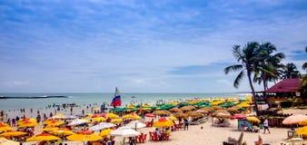 Zadziwiająca plaża blisko Maceio, Brazylia Obraz Stock