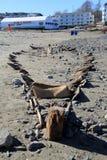 Zadziwiająca scena odgrzebany shipwreck po Nor ` wielkanoc, Krótcy piaski Wyrzucać na brzeg, Maine Obrazy Royalty Free
