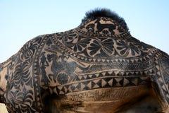 Zadziwiająca Wielbłądziego włosy sztuka przy Bikaner wielbłąda festiwalem zdjęcie royalty free