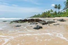 Zadziwiająca zielona natura przy Itacarezinho plażą Zdjęcie Stock