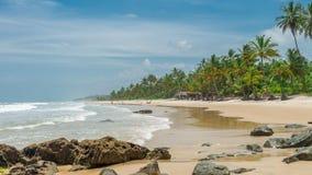 Zadziwiająca zielona natura przy Itacarezinho plażą Zdjęcie Royalty Free