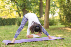 Zadziwiającej kobiety ćwiczy joga w purpurowej macie przy natury tłem Sport kobieta patrzeje zdrową i perfect sport obraz royalty free
