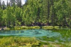 Zadziwiający błękitny gejzeru jezioro w górach Altai, Rosja Fotografia Royalty Free