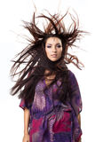 zadziwiający ciosu dziewczyny włosów portret w górę wint potomstw Zdjęcia Royalty Free