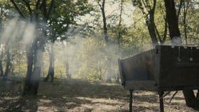 Zadziwiający dym od bbq w lesie z słońce mgłą i światłami zbiory wideo