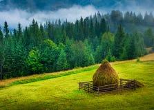 Zadziwiający góra krajobraz z mgłą Obraz Royalty Free