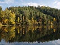 Zadziwiający jezioro po środku lasu fotografia royalty free
