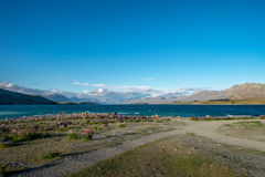 Zadziwiający krajobrazy przeglądać od Tekapo obserwatorium Obrazy Royalty Free