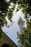 Zadziwiający meczet w Tureckiej części Fotografia Stock
