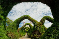 zadziwiający ogródy obrazy royalty free