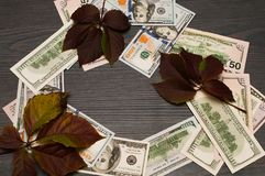 Zadziwiający okrąg dolary zdjęcia stock