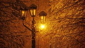 Zadziwiający opad śniegu w świetle latarni ulicznej zbiory wideo