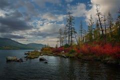 Zadziwiający piękno jesień Daleki Wschód zdjęcia stock