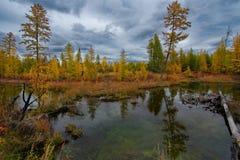 Zadziwiający piękno jesień Daleki Wschód jezioro Maksi zdjęcia royalty free