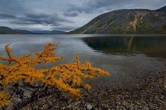 Zadziwiający piękno jesień Daleki Wschód jezioro Maksi zdjęcie royalty free