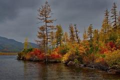Zadziwiający piękno jesień Daleki Wschód jezioro Maksi fotografia royalty free