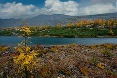 Zadziwiający piękno jesień Daleki Wschód jezioro Maksi zdjęcia stock