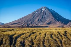 Zadziwiający vulcano w Atacama pustyni, Chile zdjęcie royalty free