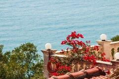 Zadziwiający widok morza i bougainvillea kwiaty Śródziemnomorski krajobraz Oleander, kolorowi kwiaty blisko patia, Denny widok Obrazy Stock