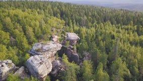 Zadziwiający widok na góra krajobrazie na lato słonecznym dniu klamerka Zieleni wzgórza zakrywali trawy i kwiatów przeciw górom zdjęcie wideo