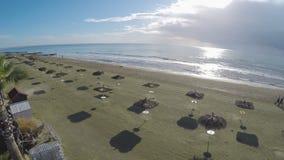 Zadziwiający widok na palmowej i pogodnej plaży w Larnaka mieście, Cypr, antena strzał zdjęcie wideo
