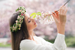 Zadziwiający wiosny piękno obrazy stock