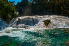 Zadziwiająca Turkusowoniebieska woda siklawy Agua Azul w Chiapas, Palenque, Meksyk Zdjęcia Royalty Free