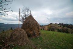 Zadziwiająca wiejska scena na jesieni dolinie Fotografia Royalty Free