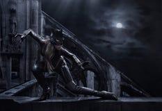zadziwiający catwoman Fotografia Royalty Free