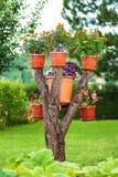 Zadziwiający domowej roboty kwiatu drzewo Obraz Stock