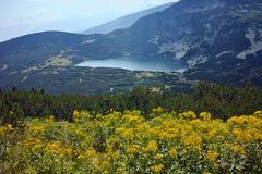 Zadziwiający krajobraz Niski jezioro Siedem Rila jezior Obrazy Royalty Free