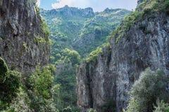 Zadziwiający krajobrazowy Targ Jiu Zdjęcia Royalty Free
