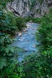 Zadziwiający krajobrazowy Targ Jiu Fotografia Royalty Free