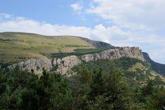 Zadziwiający naturalny spojrzenie zieleni góry las Fotografia Stock