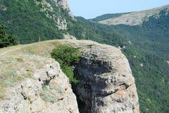 Zadziwiający naturalny spojrzenie zieleni góry las Zdjęcia Royalty Free