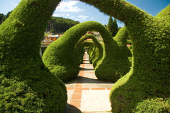 zadziwiający ogródy Zdjęcia Royalty Free