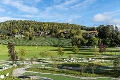 Zadziwiający sen jak szwajcarska wysokogórska góra Zdjęcia Royalty Free