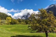 Zadziwiający sen jak Szwajcarski wysokogórski góra krajobraz Obraz Royalty Free