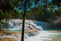 Zadziwiający zjawisko natura Krajobraz z siklawy Agua Azul, Chiapas, Palenque, Meksyk Obrazy Royalty Free