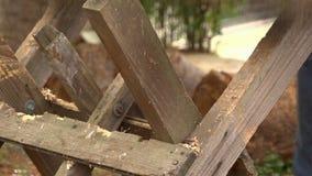 Zagend Hout met een Kettingzaag tijd-Tijdspanne 01 stock video