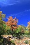 Zagoria Photographie stock libre de droits