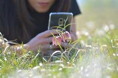 Zagrażający dziki Szachowy kwiat na łące zdjęcia royalty free