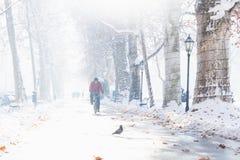 Zagreb, Croacia: 7 de enero de 2016: Motorista en el sendero con los árboles y los caminante adornados en el parque de Zrinjevac  Imagen de archivo libre de regalías