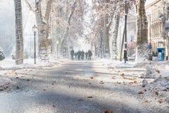 Zagreb, Croacia: 7 de enero de 2016: Sendero con los árboles adornados con las hojas y los caminante de la naranja en el parque d Fotografía de archivo libre de regalías
