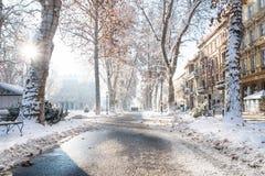 Zagreb, Croacia: 7 de enero de 2016: Sendero con los árboles, el rayo de sol y los caminante adornados en el parque de Zrinjevac  Imagen de archivo libre de regalías